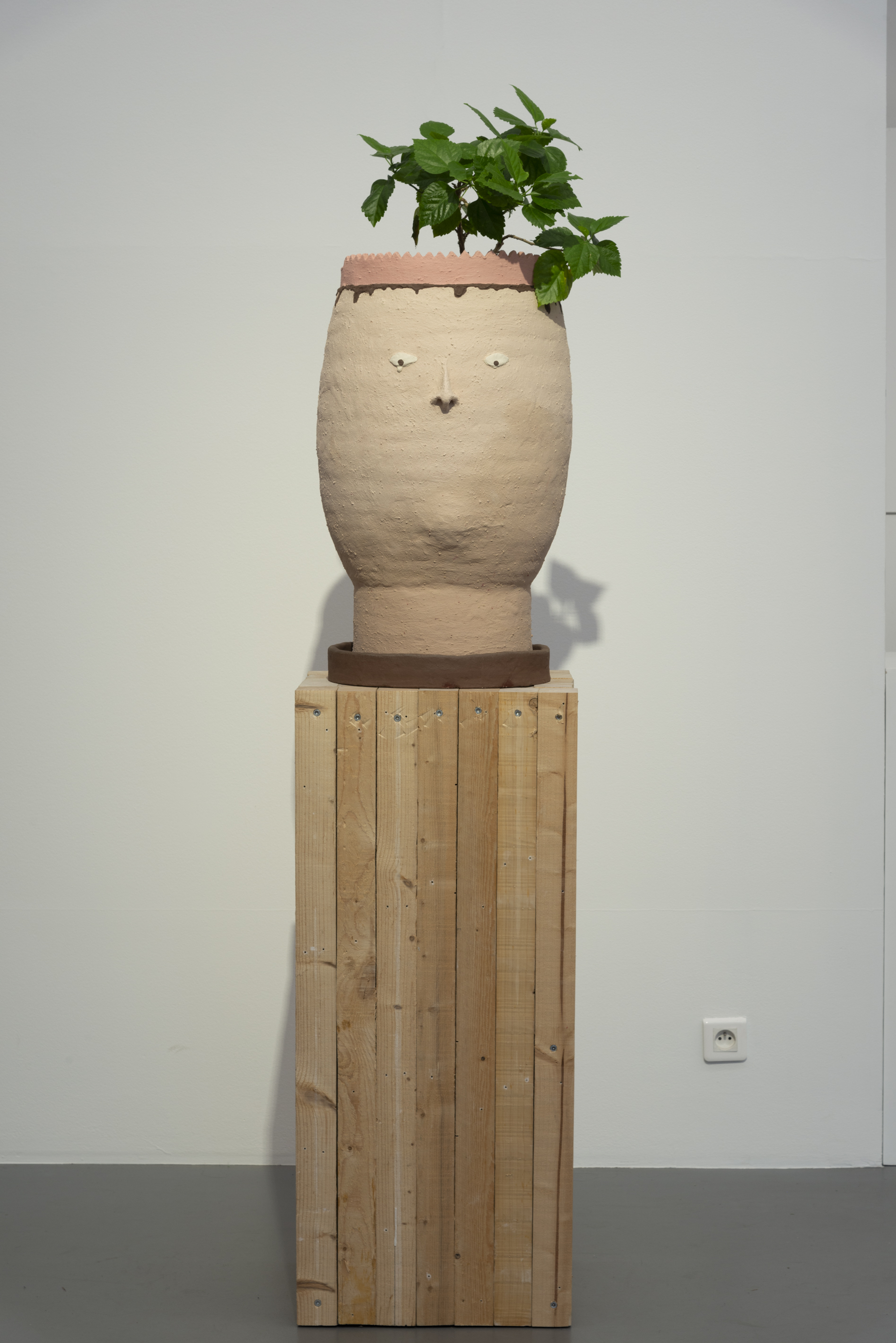 Éléonore Saintagnan, La Reine, 2019 grès coloré, abutilon production : La Criée centre d'art contemporain, Rennes courtesy de l'artiste photo : Benoît Mauras