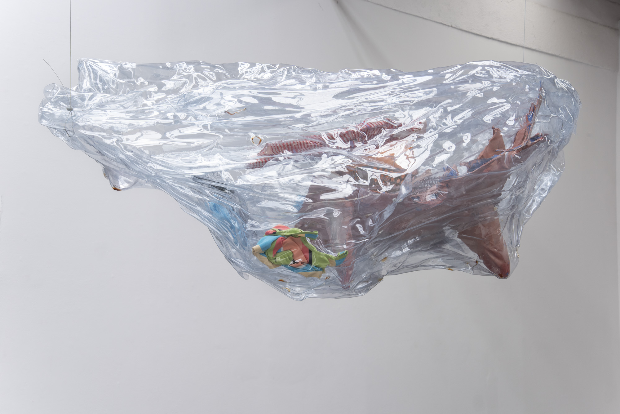 Anita Molinero, Sans titre, 2019. Polycarbonate. Production et photo le 19, Crac.